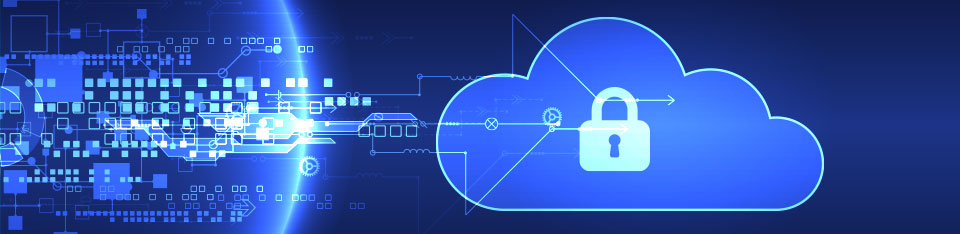 TNS SD-WAN Secure Payment Services